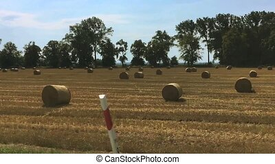 View of yellow summer fields with haystacks from moving car ...