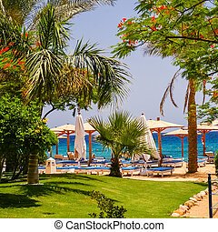 Beach at the luxury hotel, Sharm el Sheikh, Egypt - View on...