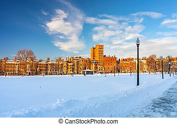 Boston public garden at winter