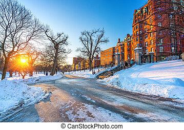 Boston public garden at winter