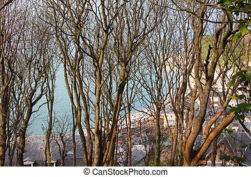 View on Etretat beach