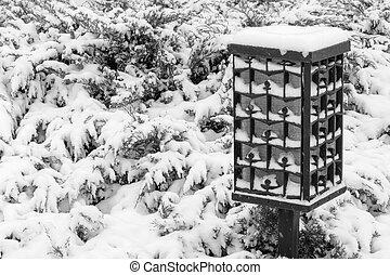 lantern in park at snowfall