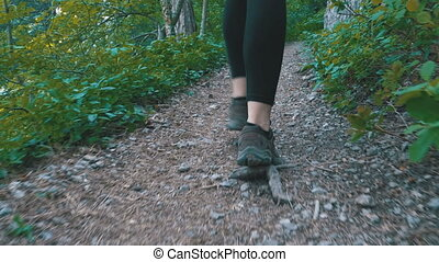 View on Legs of Traveler Woman Hiking on the Forest Trail Path in Mountain