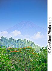 View on Merapi volcano from Borobudur temple, Java island, Indonesia