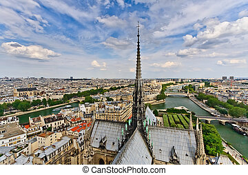 View on Paris from Notre Dame