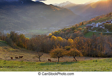 view on pasture with  alpine village in a hill under the sun at sunset