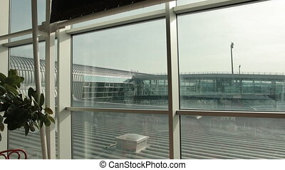 Closeup of green plant, metallic architectural constructions at airport inside terminal. View on open space ourside, floodlight, bright sun from glass window.