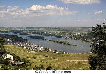 View on Ruedesheim in the Rheingau, Hesse, Germany