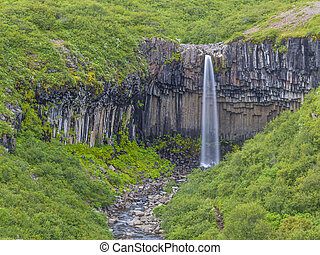 View on Svartifoss waterfall with impressive basalt stone formation on Iceland during daytime