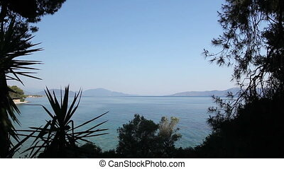 View on the bay trough green vegetation, pine tree - View...