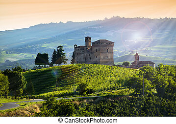 View on the castle of Grinzane cavour at Sunset, the sky is...