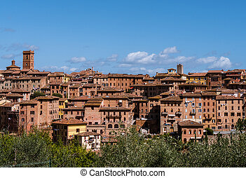 View on the city of Siena