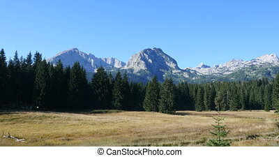 view on the top of the Durmitor National Park, Montenegro