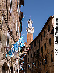 View on Torre del Mangia in Siena, Italy