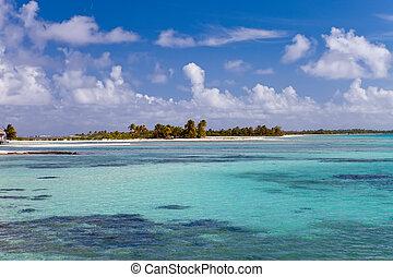 View on tropical island . Polynesia.
