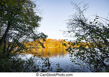 View over a lake in the fall with trees in autumn colors