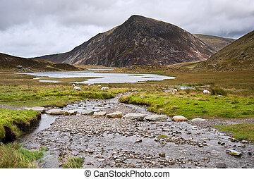 View over Llynn Idwal in Glyderau mountain range in...