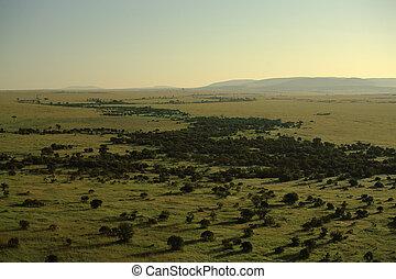View over Masai Mara