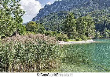 Mondsee Lake shore in Austrian Alps