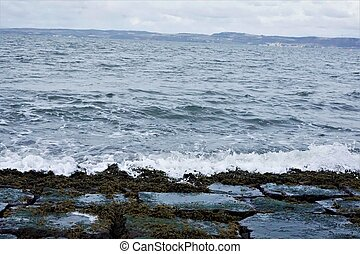 View over rocky shore with algas in Edinburgh lighthouse park