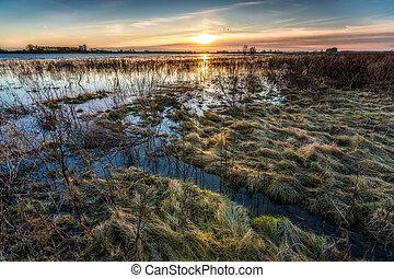 View over the floodplains of the river IJssel in Overijssel...