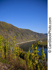view over the mosel germany
