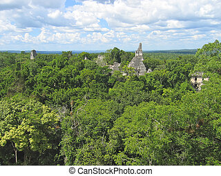View over the old maya ruins and the Peten jungle, Tikal,...