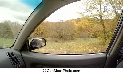 view through car window on autumn forest