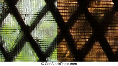 view through the diamond shaped lattice of the wooden house.