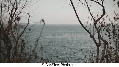 View through the trees on the sea with boat during cloudy...