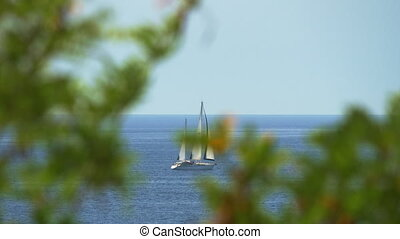 View through tree branches to the yacht sailing in sea -...