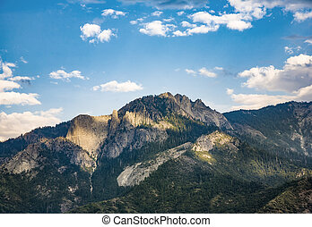 View to forest of Sequoia national park - view to forest of...