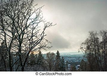 View to Holmenkollen, Oslo over trees in winter
