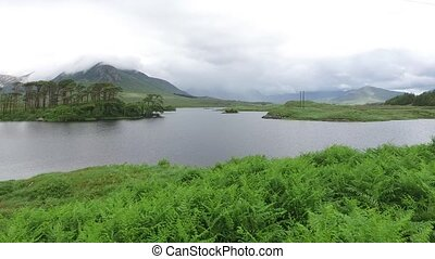 view to island in lake or river at ireland - nature and...
