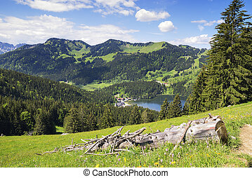 View to Spitzingsee in Alps
