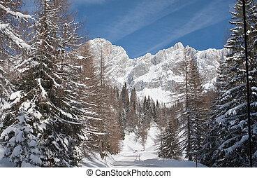 View to the Dachstein. Austria