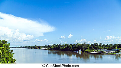 view to the river Missisippi with its wide river bed and untouched nature in Louisiana