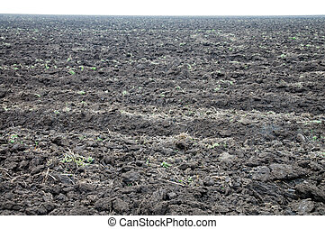 tillage - view to tillage black earth