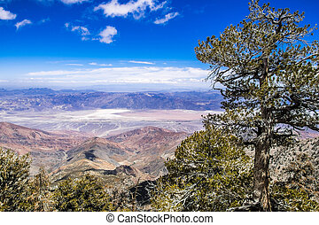 View towards Badwater Basin from the trail to Telescope Peak, Death Valley National Park, California