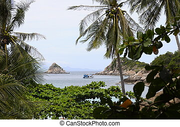 View through vegetatio upon Shark island in Koh Tao island, Thailand