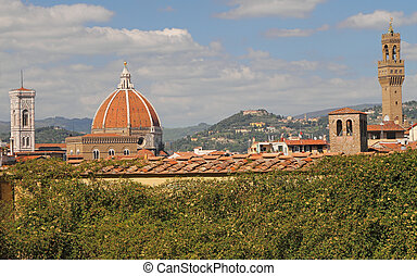 view with landmarks of Florence