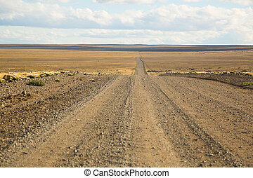 Views of steppe landscape, nature of Pampas on summer day. Patagonia, Argentina, South America
