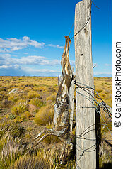 Views of steppe landscape of Pampas, Patagonia - Sunny day ...