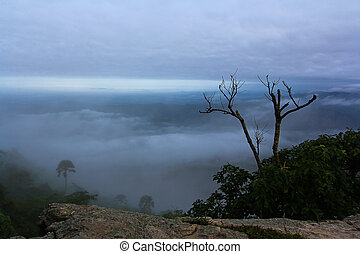 Views Pa Hin Ngam National Park in Chaiyaphum thailand