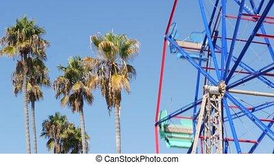 vif, pacifique, californie, newport, amusement, classique, ...