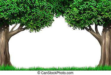 vignette, bäume, rahmen, dekorativ