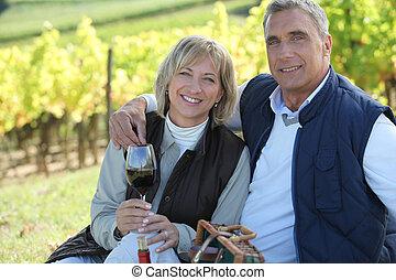 vignoble, couple, dégustation de vins