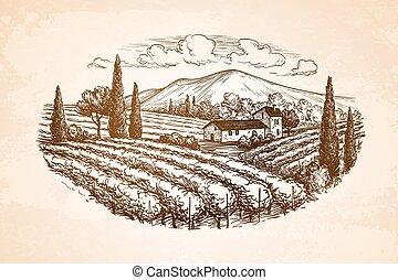vignoble, dessiné, paysage, main