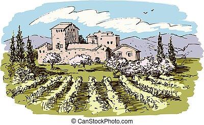 vignoble, dessin, paysage, vecteur