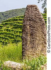 vignoble, pierre, bord